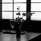 Japanese back light and orchids  by Mick Kupresanin