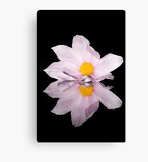 Flower six Canvas Print