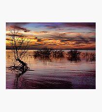 Multi Colored Photographic Print