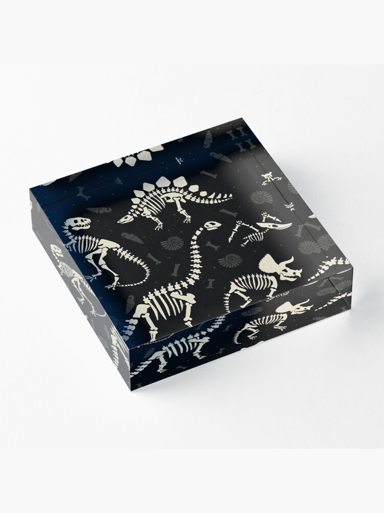 Alternate view of Dinosaur Fossils in Black Acrylic Block
