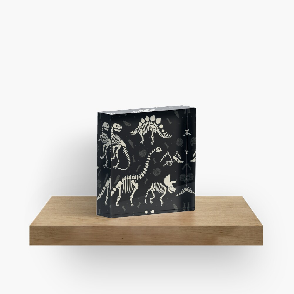 Dinosaur Fossils in Black Acrylic Block