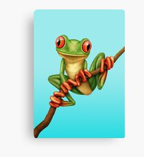 Cute Green Tree Frog on a Branch Canvas Print