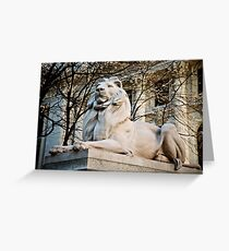 Lion-New York Public Library Greeting Card