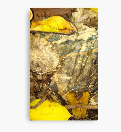 Tiny Glow in the Dark, Fungi Mushtooms Canvas Print