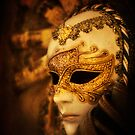 Hiding Behind the Mask by Yelena Rozov
