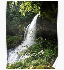 Dry Falls North Carolina  Poster