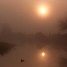 Misty Coot Sunrise by John Dunbar
