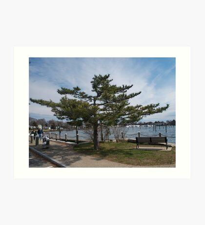 Overlooking Wickford Harbor Art Print