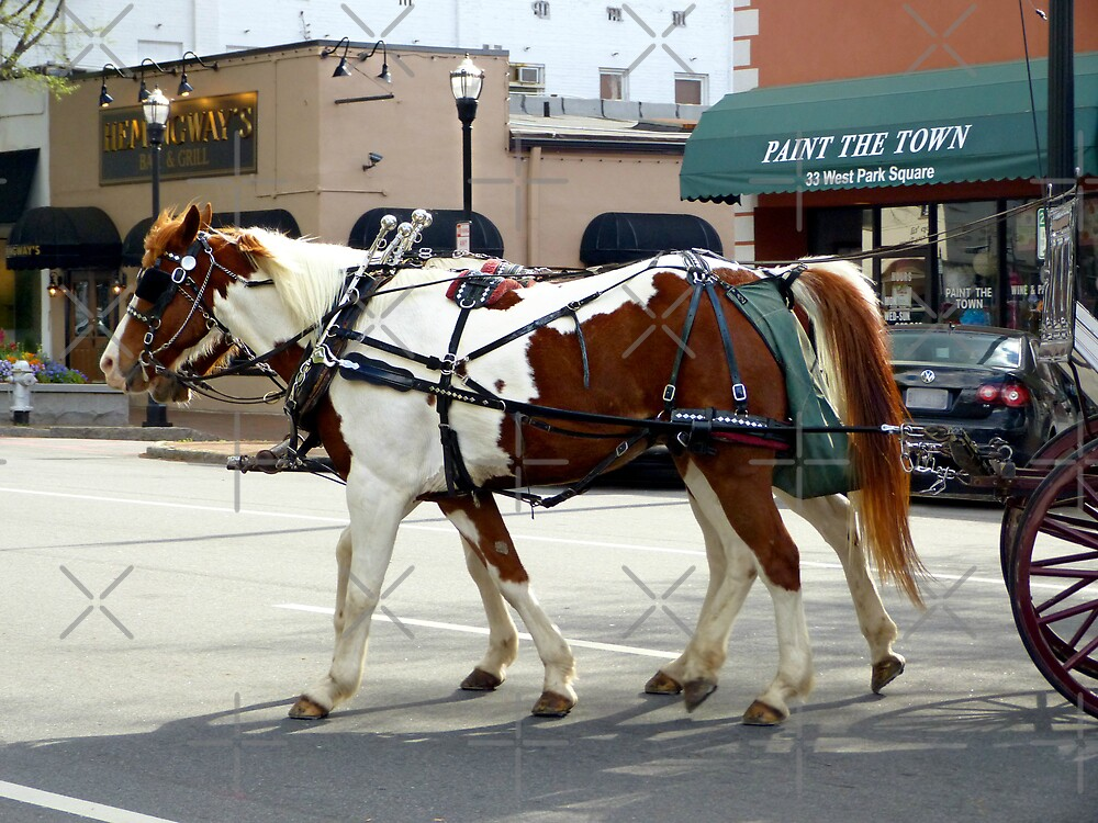 Horses pulling a carriage by Scott Mitchell