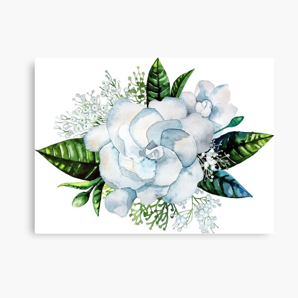 Watercolor gardenia and gypsophila vignette Canvas Print
