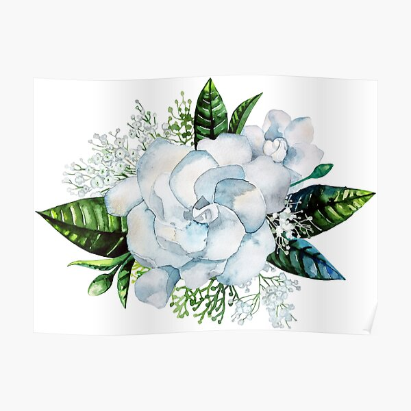 Watercolor gardenia and gypsophila vignette Poster