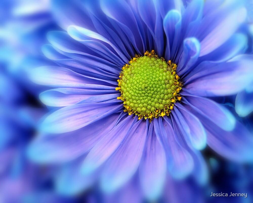 Blue by Jessica Jenney