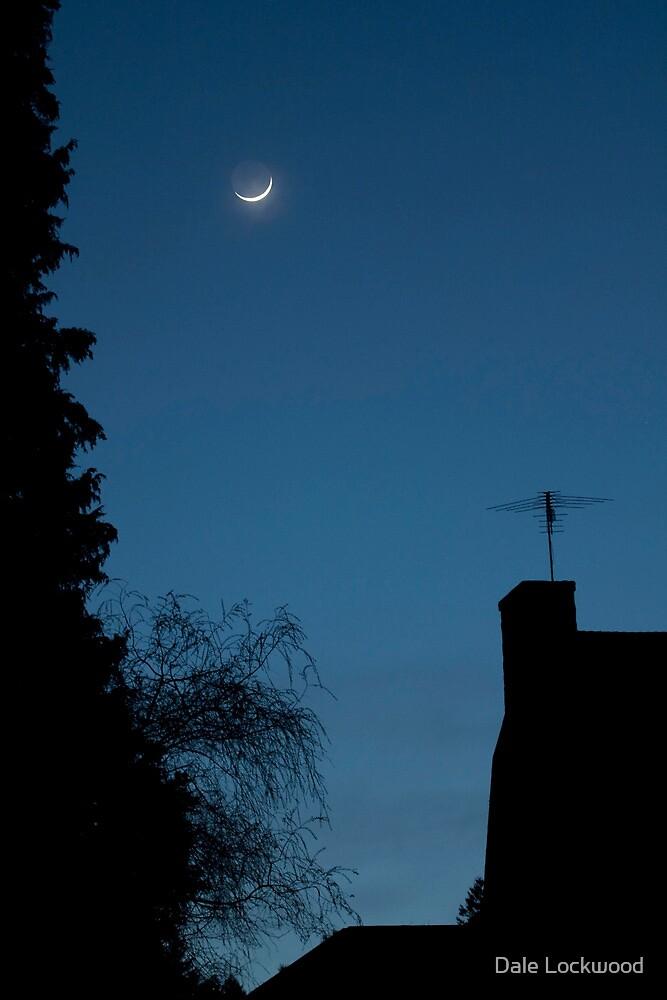 Moon Setting on Aldarra by Dale Lockwood