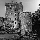 BLARNEY CASTLE,   COUNTY CORK,  IRELAND............! by Roy  Massicks