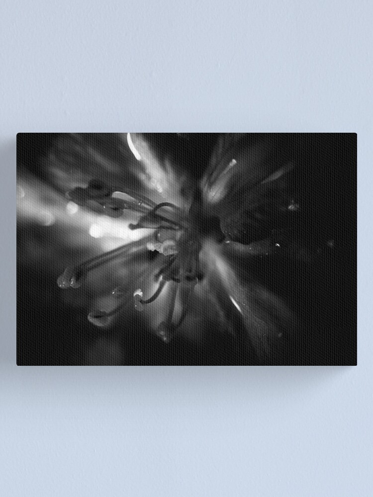 Alternate view of Shooting Star Canvas Print