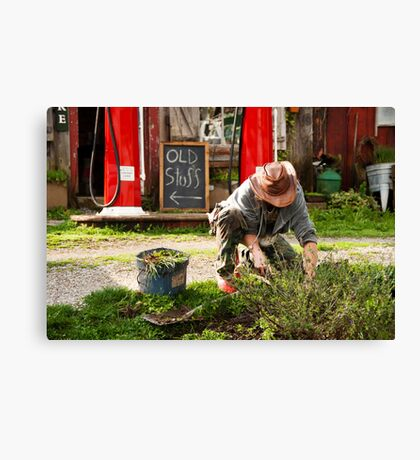 The Garden Artisan Canvas Print