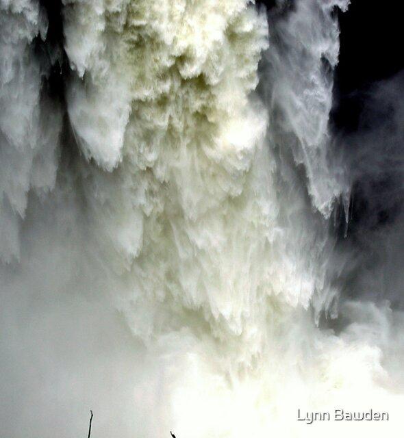 """""""Breath Taking"""" by Lynn Bawden"""