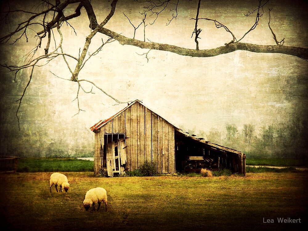 Wherever You May Roam, Always Call This Home by Lea  Weikert