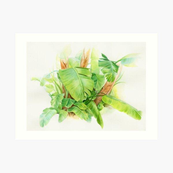 Jungle green Art Print