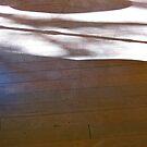 26/3 across the floor by Evelyn Bach