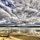5 Mile Beach - Hobart - Tasmania  by WobblyWombat
