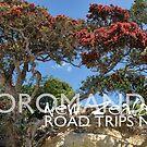 Coromandel Road Trips No 3 by Ken Wright