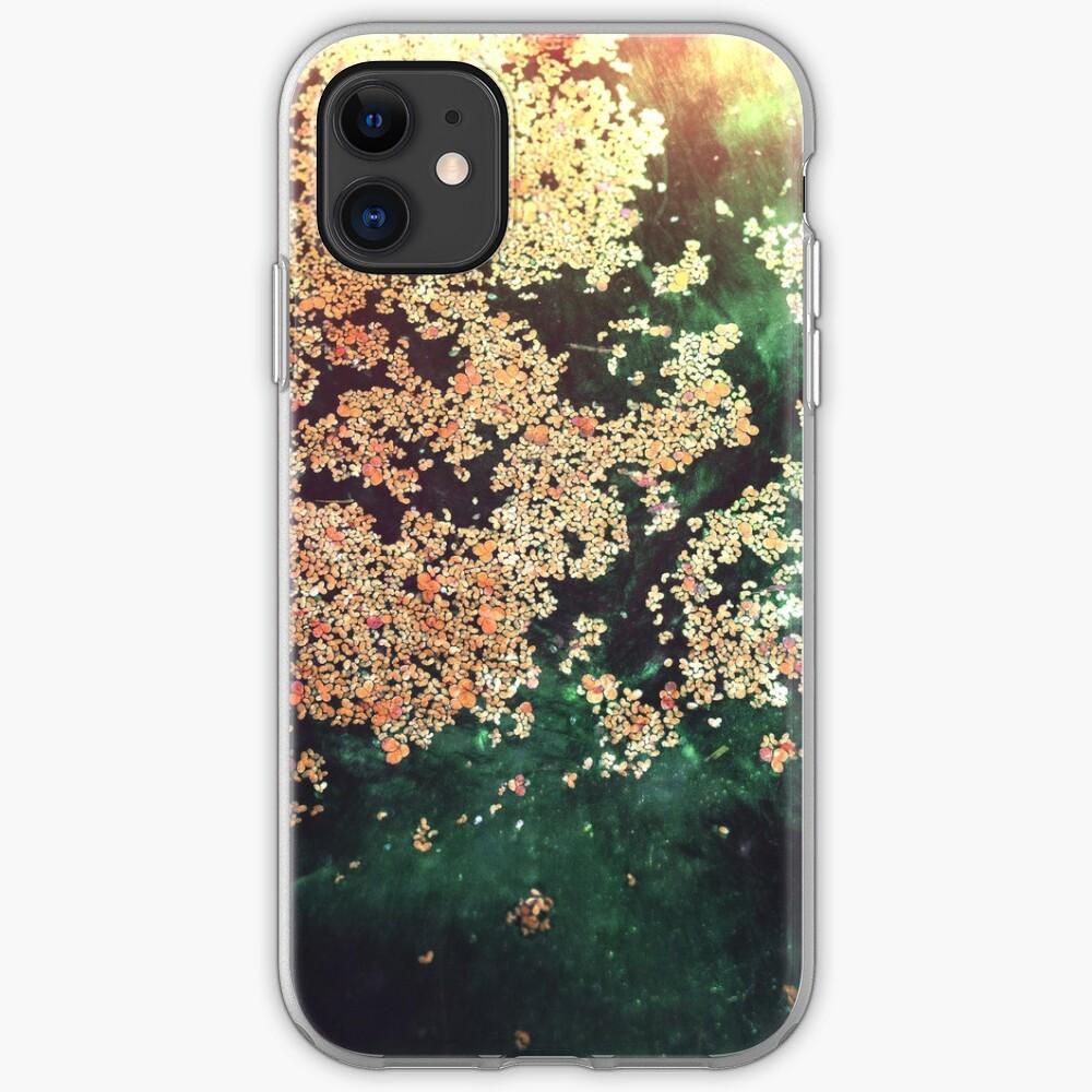 EAUX-FORTES iPhone Case & Cover
