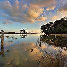Waiaro Mangrove Reflections by Ken Wright
