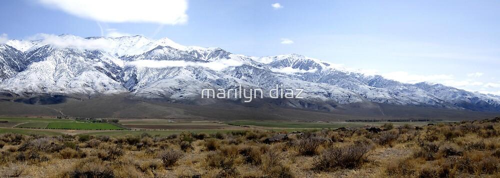 Overlooking Owens Valley by marilyn diaz