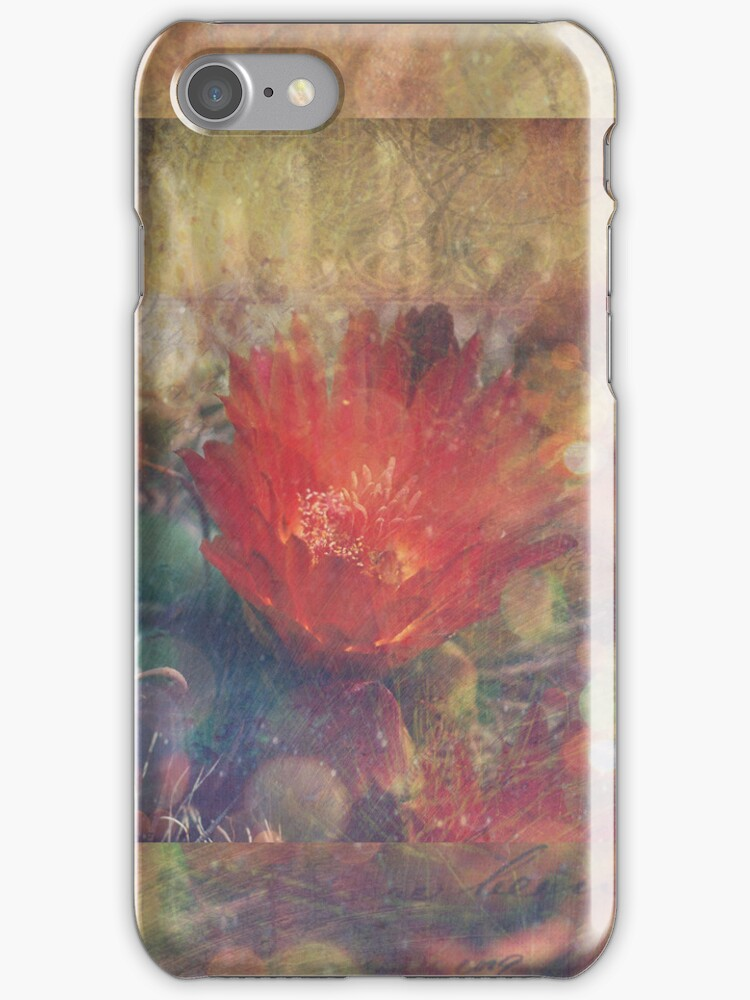 Cactus Flower Textured by lesanchez