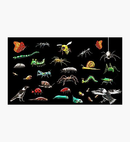 Creatures wallpaper Photographic Print