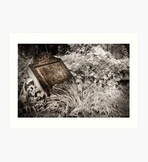 Back to Nature (Infrared) Art Print