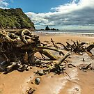 Sailors Grave Beach by Ken Wright