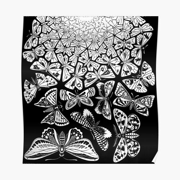 Butterflies Tessellation 1950 - Maurits Cornelis Escher Poster