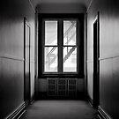 Shadows and Light by Paul Politis