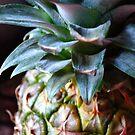 Pineapple Monday  by DearMsWildOne