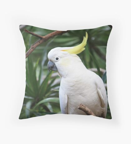 """Hey, where are my seeds?"" Throw Pillow"