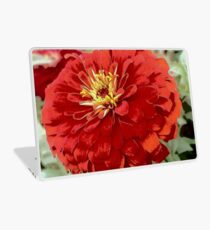 Flowers in Bloom - Red Zinnia Laptop Skin