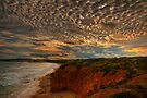 Evening at Rocky Point by Christine Smith