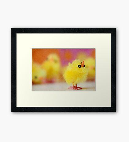 Easter Chicky Babe Framed Print