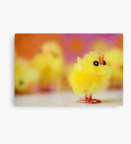 Easter Chicky Babe Canvas Print