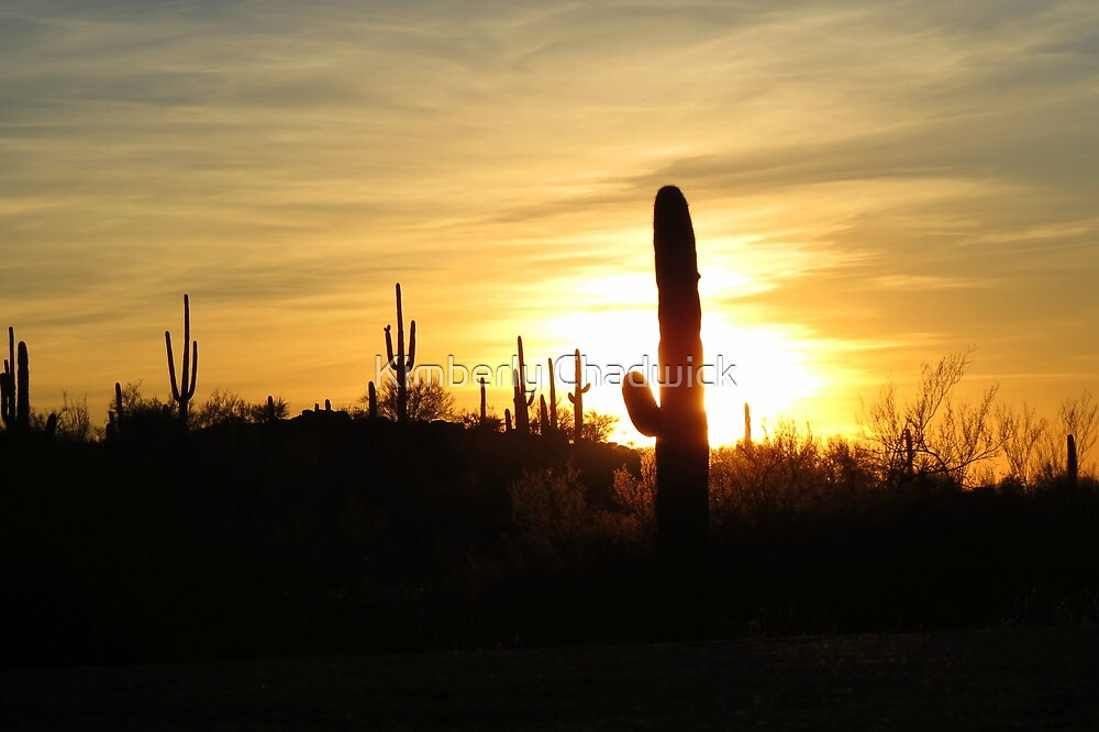 Another day in the Desert ~ by Kimberly Chadwick