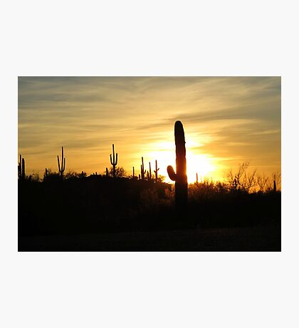 Another day in the Desert ~ Photographic Print