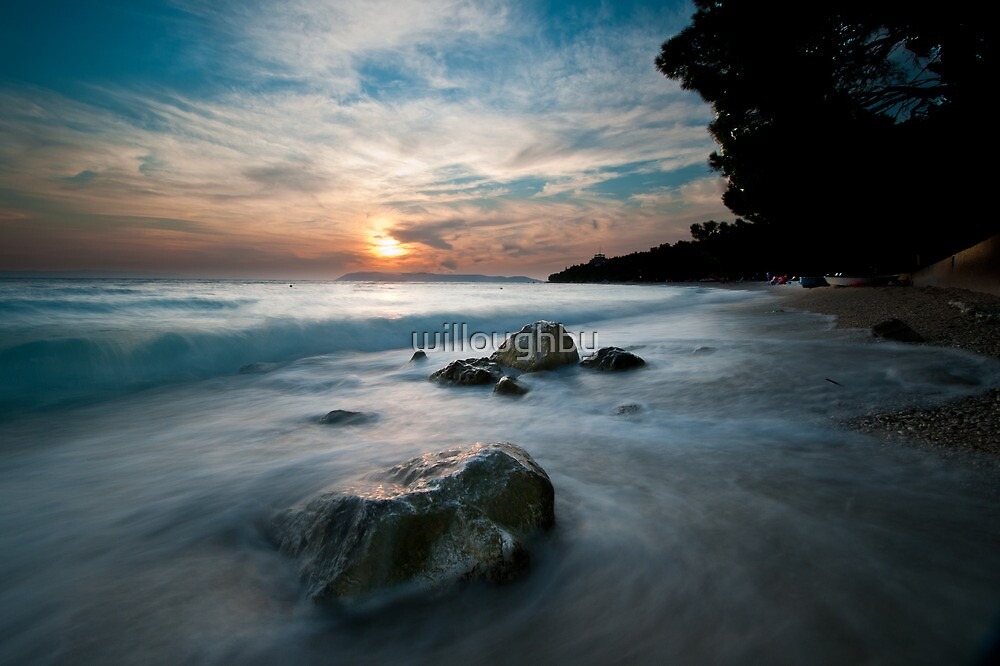 Paradise  by willoughby