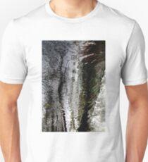 Lady of the Lake Unisex T-Shirt