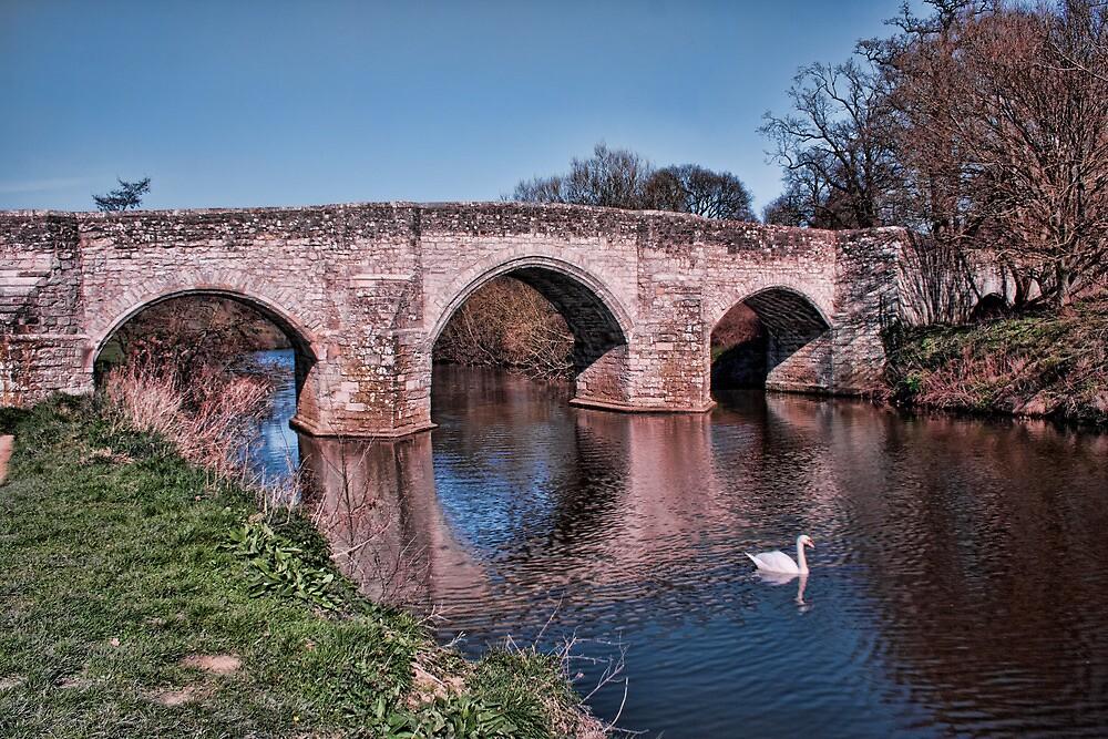 Teston Bridge by Dave Godden