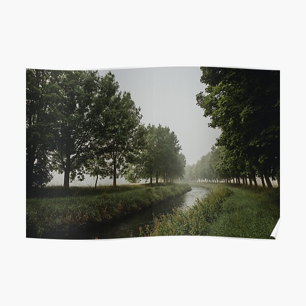 The bend of river between trees in misty morning Poster