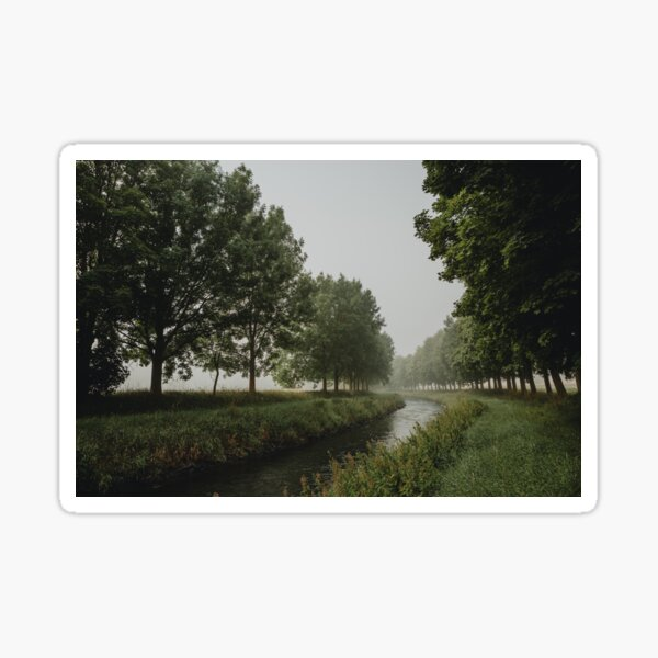 The bend of river between trees in misty morning Sticker