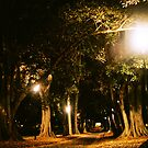 Park Light by MichaelCouacaud