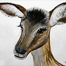 MY IMPALA BABY IN PORTRAIT - My Baba Impala by Magriet Meintjes